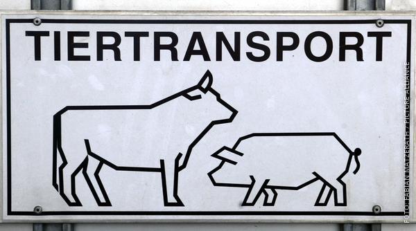 Schild mit Tiertransport