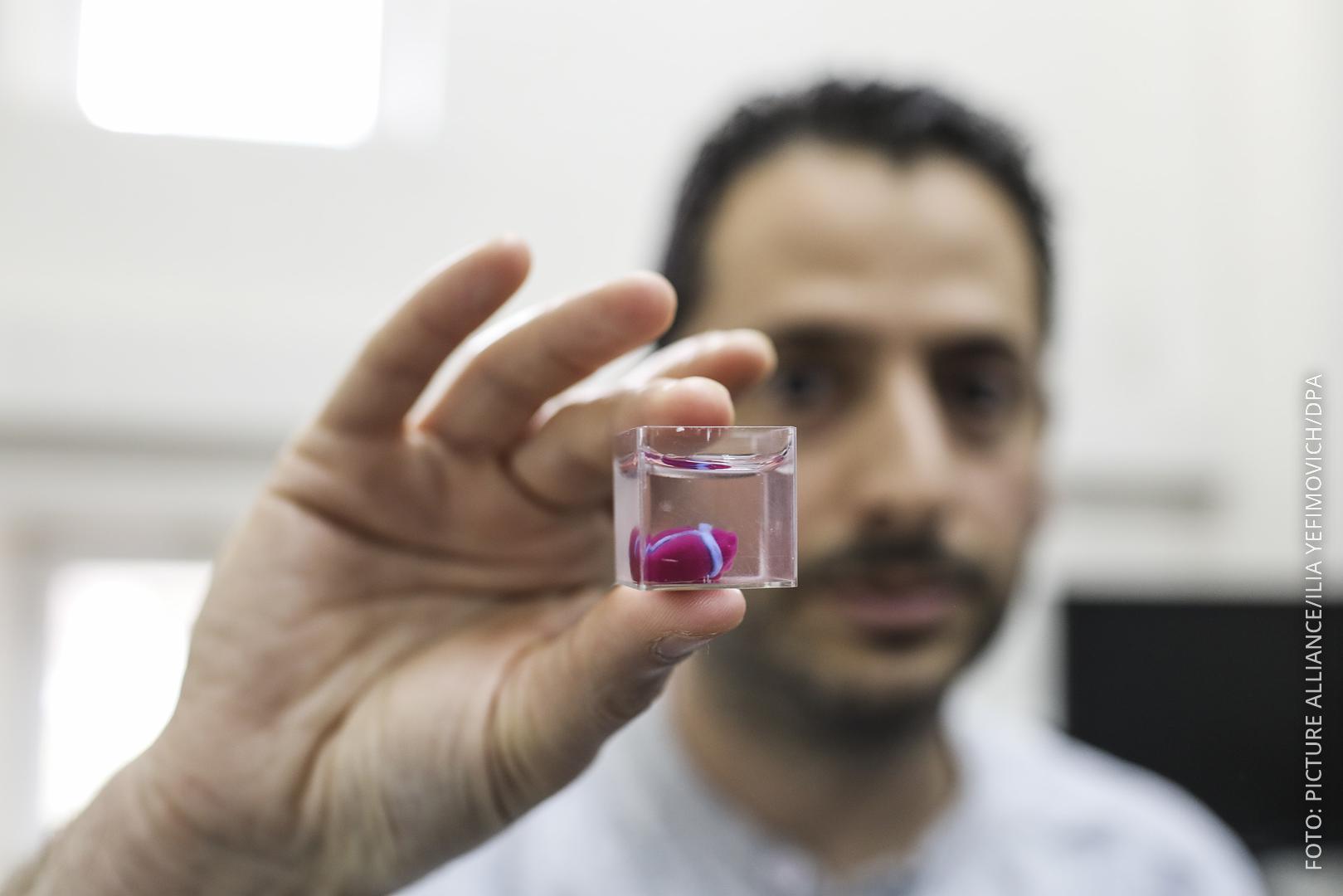 Forscher hält das winzige gedruckte Herz in die Kamera