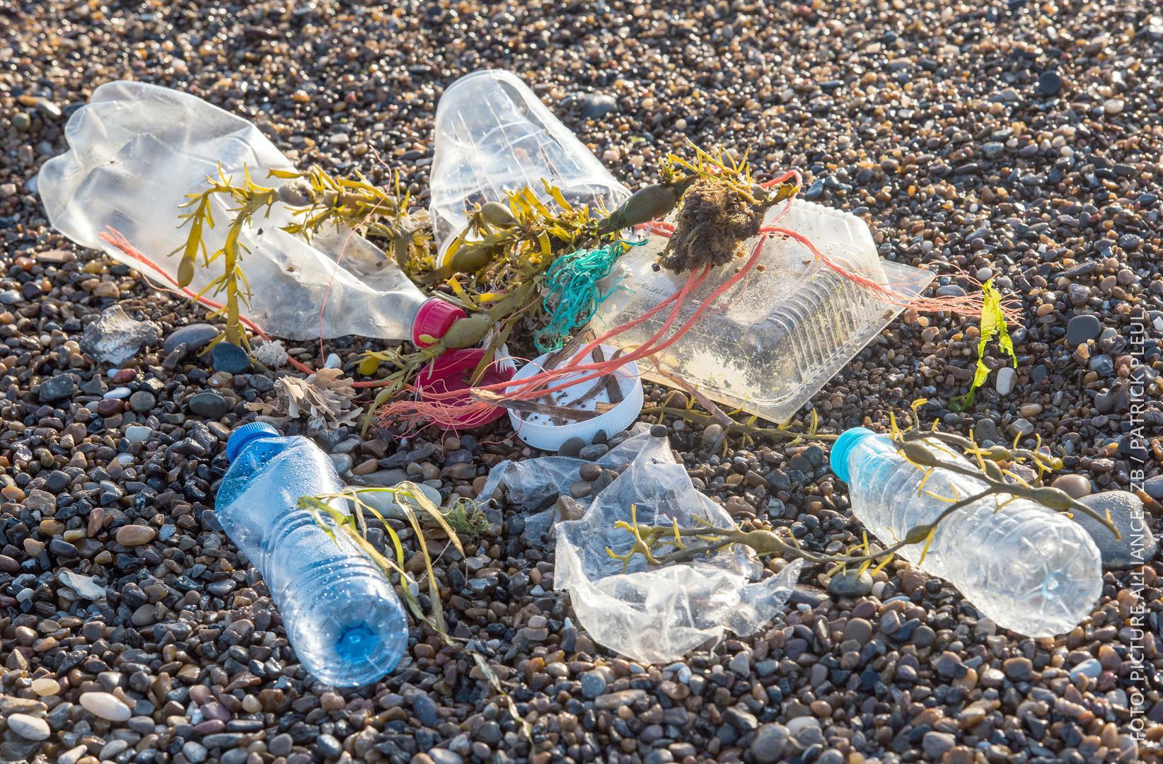 Plastikflaschen liegen an einem Strand.