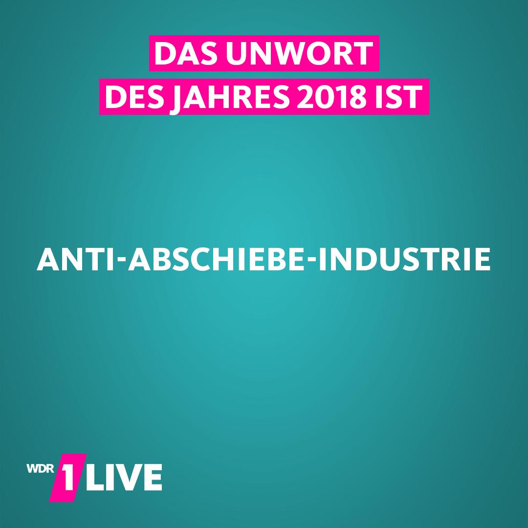 Das Unwort des Jahres ist: Anti-Abschiebe-Industrie