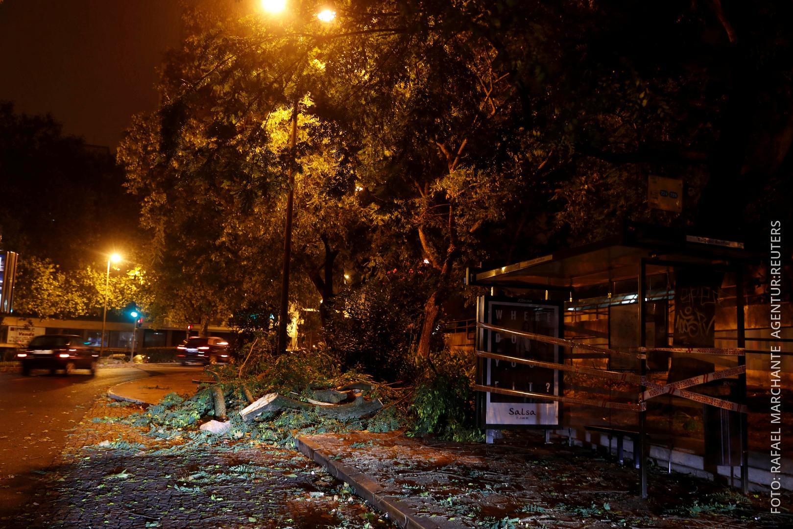 Ein entwurzelter BAum liegt auf der Straße, eine Bushaltestelle ist zerstört