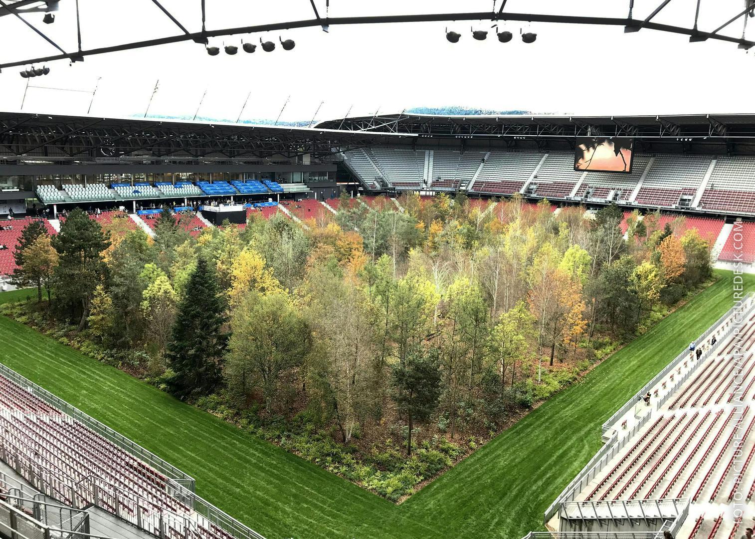 Bäume auf dem Spielfeld des Wörthersee Stadions