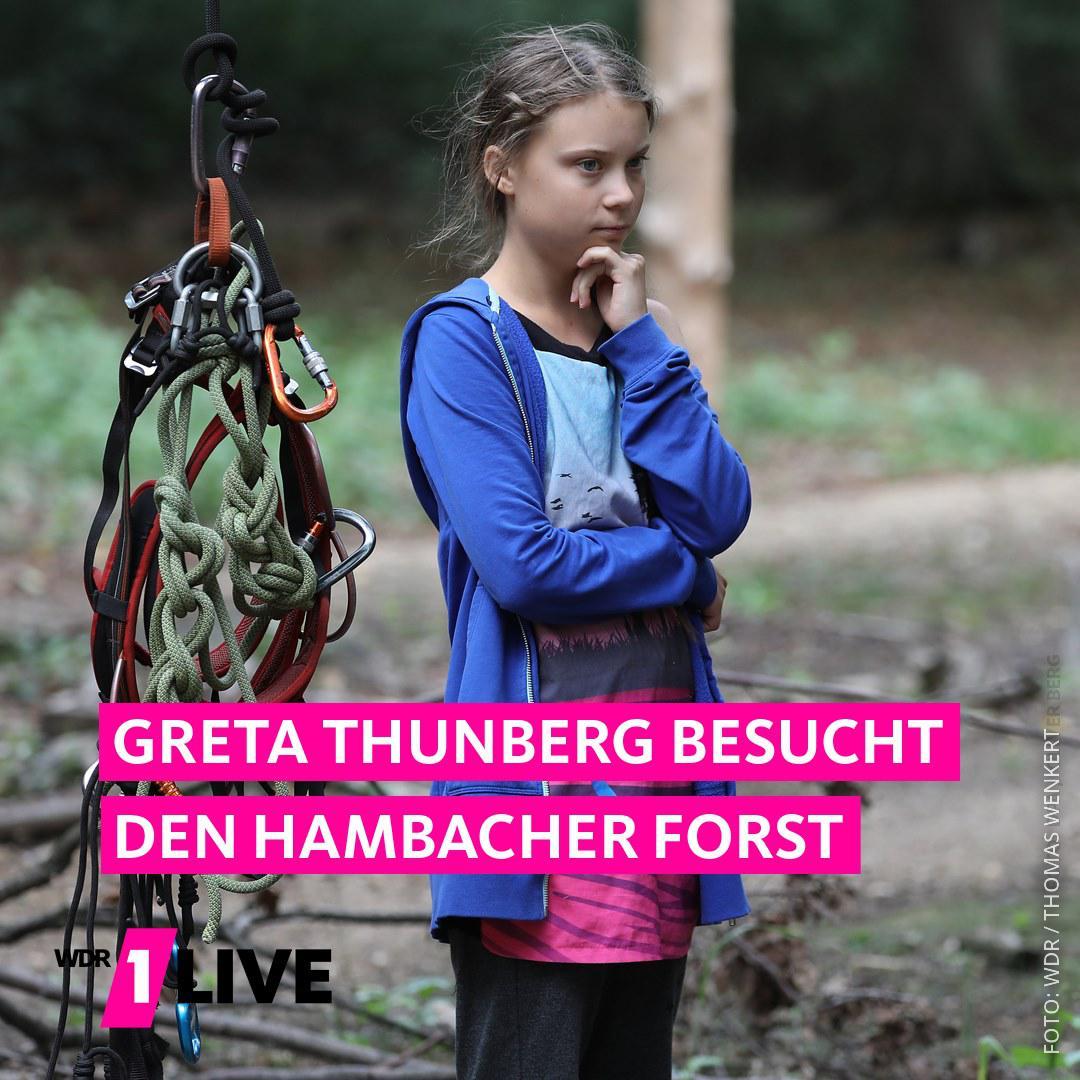 Greta Thunberg gibt im Hambacher Forst ein Statement vor Journalisten und Umweltaktivisten.