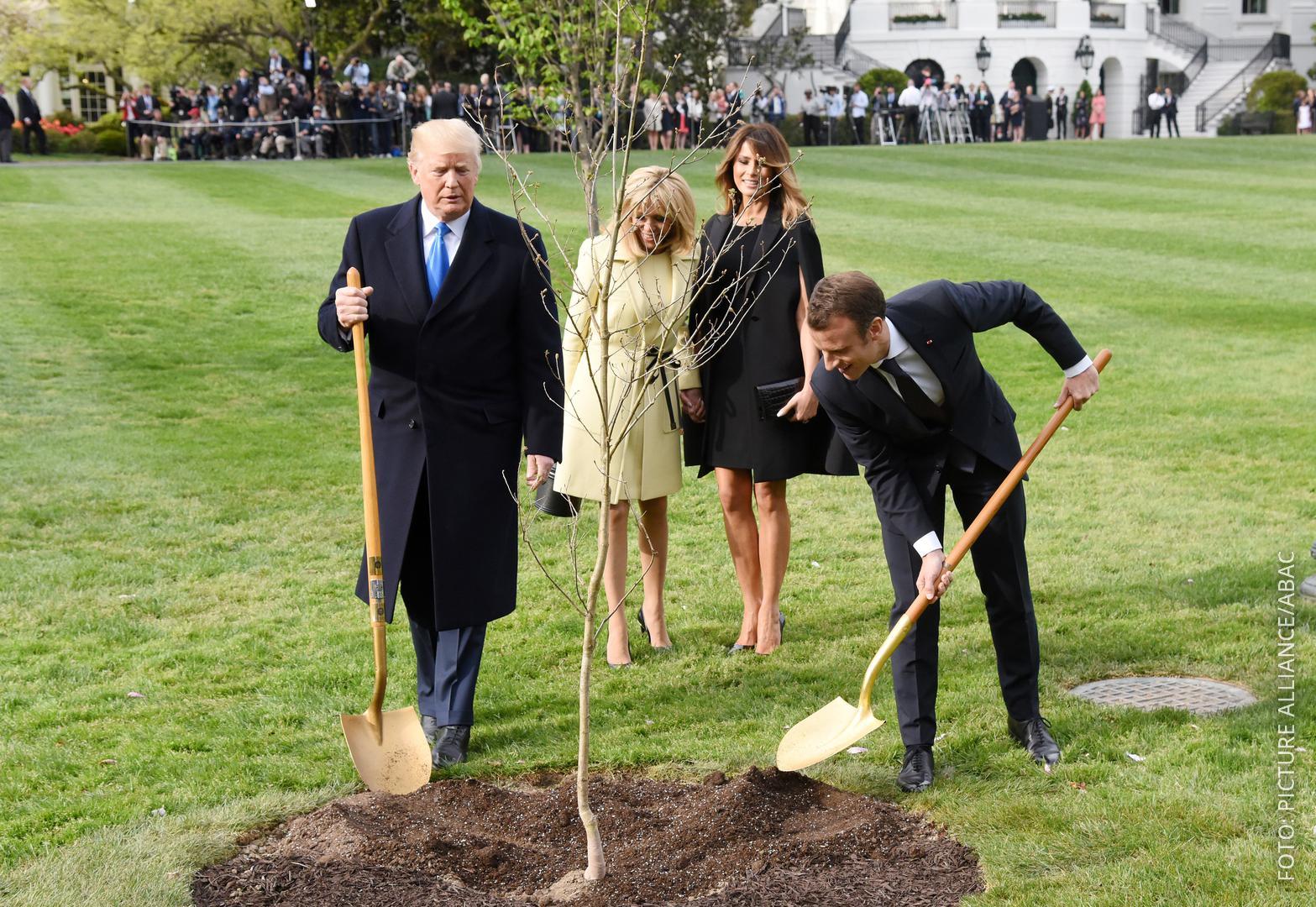 Trump und Macron pflanzen einen Baum ein.