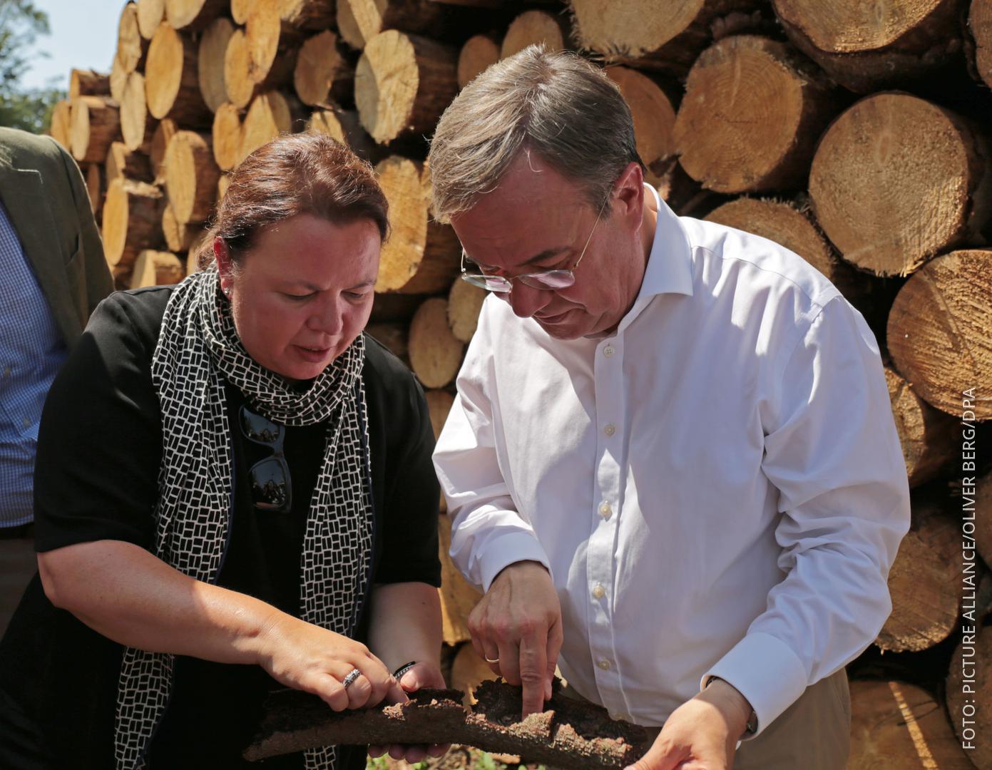 Laschet und Heinen-Esser begutachten Holz