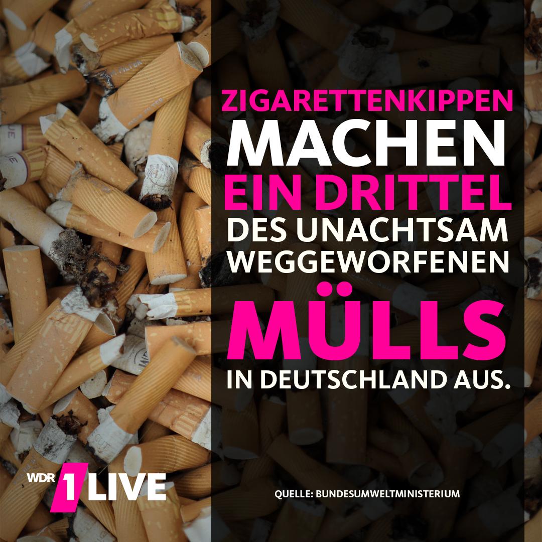 Zigarettenkippen machen ein Drittel des Mülls auf der Straße aus