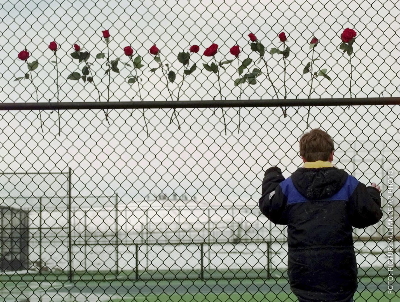Ein kleiner Junge steht an einem Zaun, an dem 13 rote Rosen befestigt sind