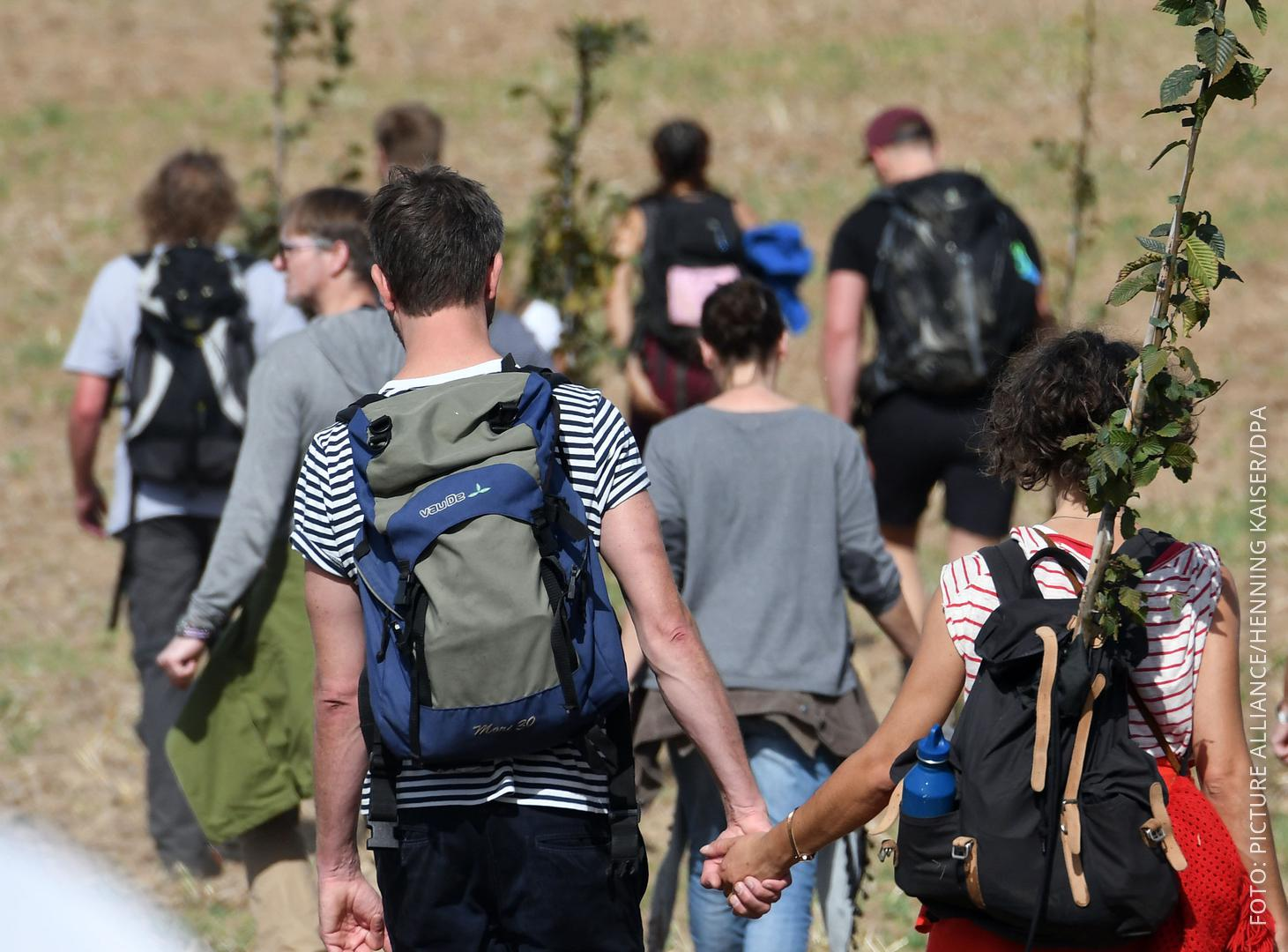 Demonstranten am Hambacher Forst tragen Baumsetzlinge die sie auf dem gerodeten Teil des Forstes anpflanzen wollen.