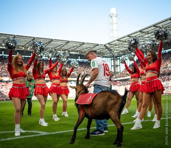 Cheerleader vom 1. FC Köln begrüßen Spieler