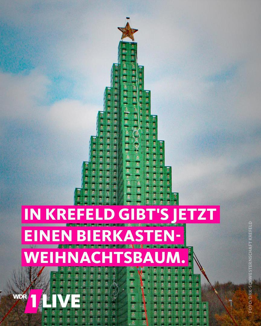 Der Letzte Weihnachtsbaum.Das Letzte Weihnachtsbaum Aus Bierkästen