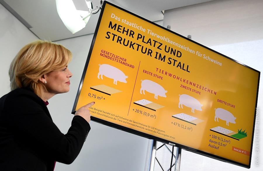 Julia Klöckner stellt Tierwohllabel vor und zeigt auf eine Tafel.